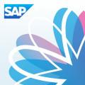 『SAP』まとめ記事一覧